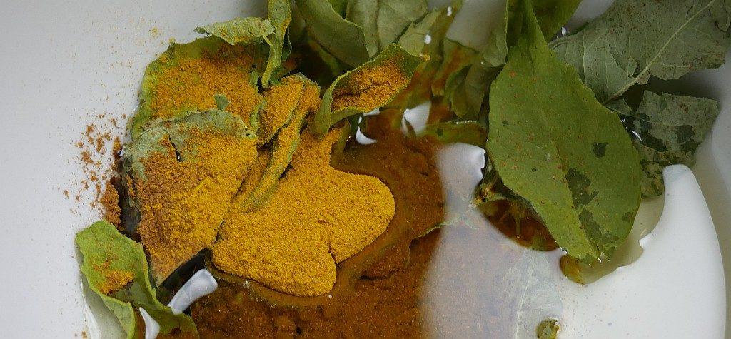 Curryblätter Kurkuma Zimt Öl